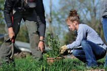 Central's focus on sustainability includes everything from organic gardening to coursework on social justice.